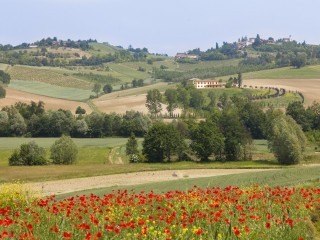 MONFERRATO, history ... with taste!