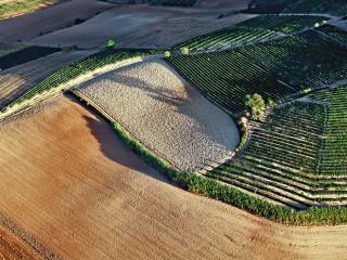 Monferrato: vini e arte contemporanea