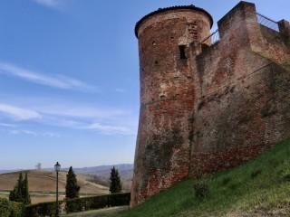 Area del Castello di Castelnuovo Calcea