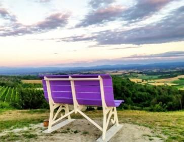 Il Monferrato si tinge di lilla: sulle strade della lavand…