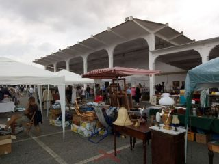 Antique Market & Farmer Market