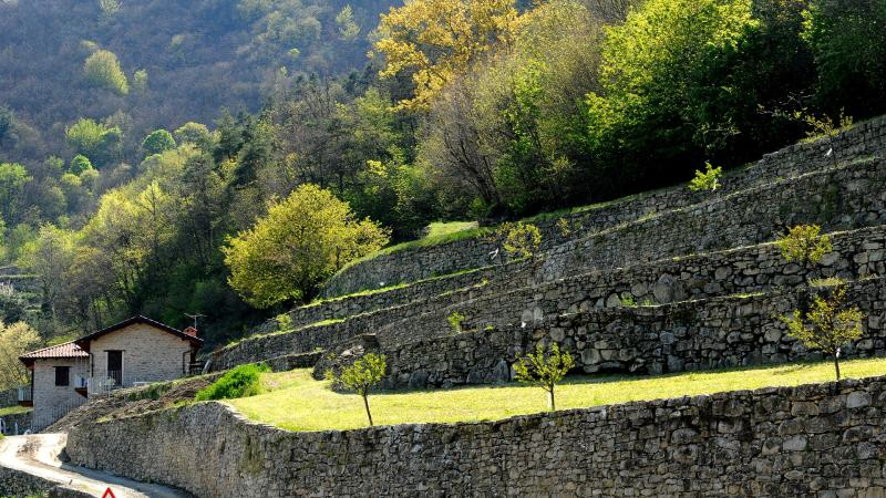 Grande Traversata delle Langhe: Stage 2B from Pezzolo Valle Uzzone to the Sanctuary of Todocco
