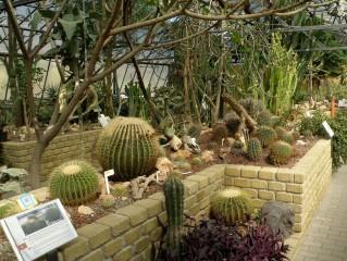 Giardino Botanico Dina Bellotti