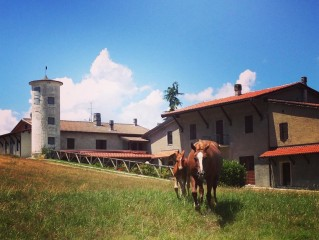 Cascina Gazzeri Country House