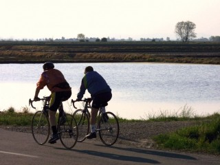 Cycling along the Rice Paddies - Along the Sesia