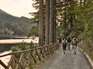 Rete Natura 2000 - Capanne di Marcarolo